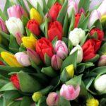Праздник весны 8 Марта