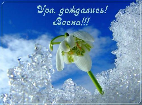 Ура, дождались весны!